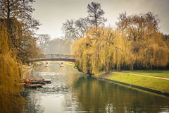 Cam river, Cambridge Royalty Free Stock Image
