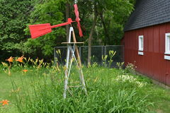 Cama de daylilies en la granja de Minnesota Fotos de archivo