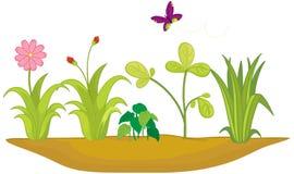 Cama de flor stock de ilustración