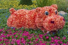 Cama de flor Fotografía de archivo