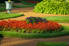 Cama de flor Imagem de Stock Royalty Free