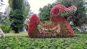 Cama de flor bajo la forma de patos en el parque Fotografía de archivo libre de regalías