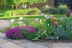 Cama de flor con las flores de la primavera fotos de archivo libres de regalías