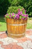 Cama de flor decorativa Imagens de Stock Royalty Free
