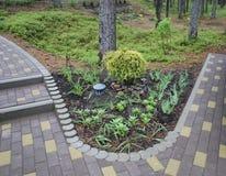 Cama de flor decorativa landscaping fotografía de archivo libre de regalías