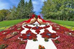 Cama de flor do Arabesque com um grande número máscaras brancas e vermelhas das flores sob a forma de dois pássaros no monte Foto de Stock