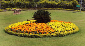 Cama de flor do parque Fotos de Stock