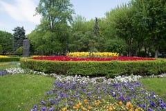Cama de flor em um jardim formal Fotografia de Stock Royalty Free