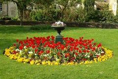 Cama de flor en un jardín formal Fotografía de archivo libre de regalías