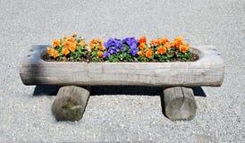 Cama de flor en un tronco de árbol Fotos de archivo libres de regalías