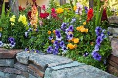 Cama de flor hermosa Imagenes de archivo