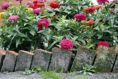 Cama de flor no jardim Fotografia de Stock Royalty Free
