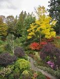 Cama de flor y senda para peatones multicoloras encantadoras Imagen de archivo libre de regalías