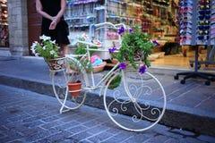 Cama de la bici Imagenes de archivo