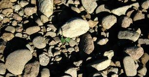 Cama de la roca foto de archivo libre de regalías