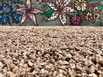 Cama de la roca de la flor de la pintada Foto de archivo libre de regalías