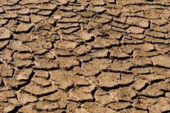 Cama de lago seco Fotografía de archivo