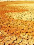 Cama de lago seco Fotografia de Stock Royalty Free