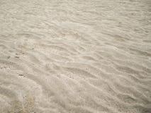 Cama de mar, arena foto de archivo