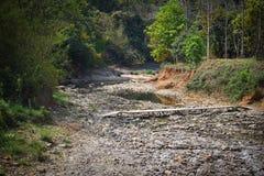 Cama de río pedregosa seca con el puente de bambú Imagen de archivo