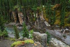Cama de río rocosa de las ovejas fotos de archivo libres de regalías