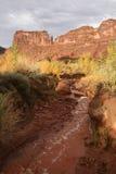 Cama de río seca fotografía de archivo libre de regalías