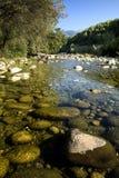 Cama de río transparente fotografía de archivo libre de regalías