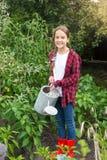 Cama de riego del jardín del jardinero de sexo femenino joven con las verduras Fotografía de archivo