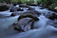 Cama de rio Fotos de Stock Royalty Free