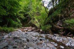Cama de rio da montanha Imagem de Stock