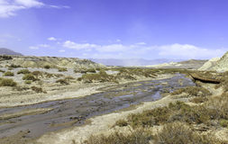 Cama de rio de secagem Foto de Stock