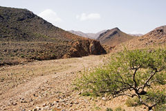 Cama de rio seca nas montanhas Imagens de Stock Royalty Free
