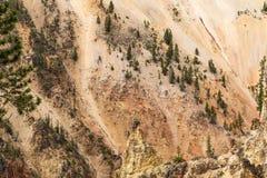 Cama de Yellowstone Grand Canyon para parque nacional do Yellowstone River, Yellowstone, EUA fotos de stock