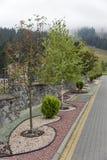 Cama del jardín en montañas cárpatas Imagen de archivo libre de regalías