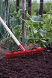Cama do jardim de Prepeare no tempo de semeação Fotografia de Stock