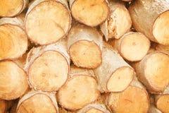 Camada ascendente próxima da textura crua dos logs, testes padrões naturais no fundo foto de stock royalty free