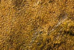 Camada fina de água Fotos de Stock Royalty Free