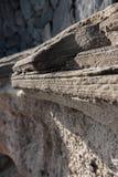 Camadas da lava em tenerife Imagem de Stock Royalty Free