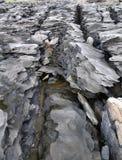 Camadas das rochas metamórficas Fotos de Stock