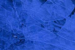 Camadas de folhas de gelo Imagens de Stock