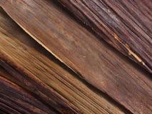 Camadas do folheado de madeira Imagens de Stock Royalty Free