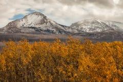 Camadas do outono no parque nacional de geleira fotografia de stock