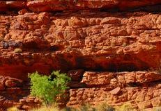 Camadas vermelhas da rocha Foto de Stock