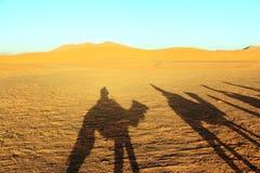 Camal caravan on a Nomad trip through sand desert.  Stock Photo