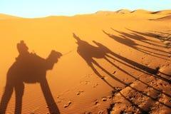 Camal caravan on a Nomad trip through sand desert.  Stock Image