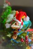 Camaleão Santa Claus Fotografia de Stock Royalty Free