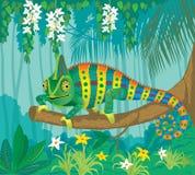 Camaleón en la selva tropical Fotografía de archivo libre de regalías