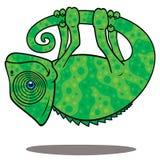 Camaleón mágico Foto de archivo libre de regalías