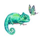 Camaleonte verde dell'acquerello con le farfalle illustrazione di stock