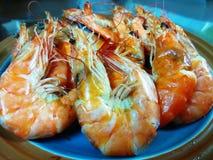 Camarão-camarão salgado secado Imagens de Stock Royalty Free